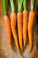 carotte photo