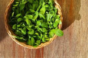panier en osier avec des feuilles de salade de maïs vert photo
