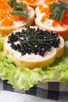 sandwichs au caviar de poisson rouge et noir sur laitue photo