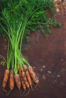 Bouquet de carottes fraîches sur fond de métal rouillé grunge
