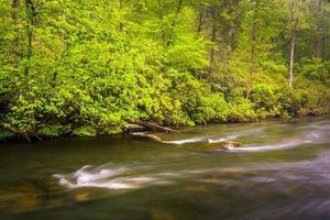 Cascades sur la rivière à poudre près du réservoir de Prettyboy à Balt