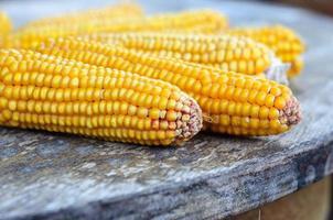 maïs sur l'ancienne table rustique photo