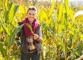 portrait, de, heureux, jeune femme, debout, dans, champ maïs photo