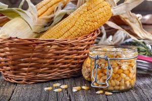 Maïs en conserve photo