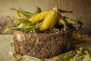 nature morte avec du maïs