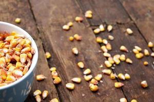 grains de maïs photo
