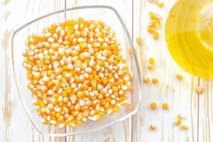 fond de maïs photo