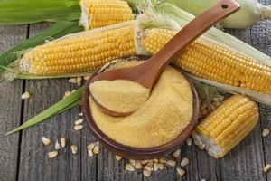 grains de maïs polenta photo
