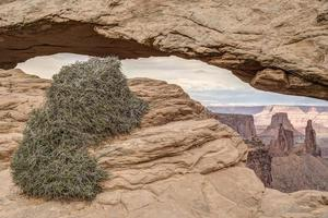 parc national de canyonlands photo