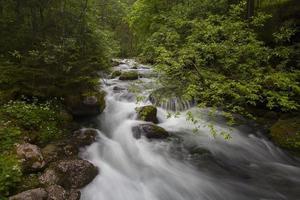 rivière schwarzbach photo