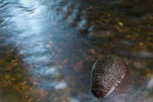 détail de la rivière photo