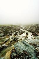 rivière et brouillard