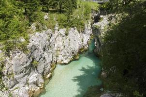 lit de rivière turquoise photo