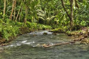 chutes de la rivière kawasan photo