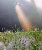 lever de soleil d'été