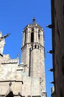 cathédrale de la sainte croix et sainte eulalie, barcelone, espagne