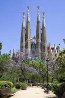 sagrada familia (barcelone) photo