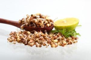 tas de matki germé avec des feuilles de citron et de coriandre fraîches photo