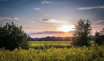 paysage de campagne