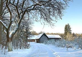 paysage d'hiver photo