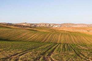 le paysage de terrain photo