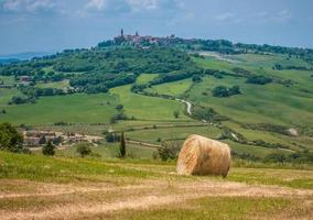 paysage toscan typique photo