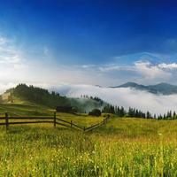 paysage brumeux du matin