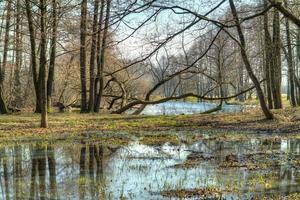 paysage de printemps. photo hdr