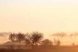 lever du soleil sur le paysage rural