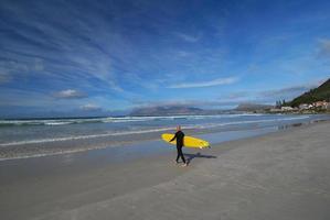 surf longboard photo