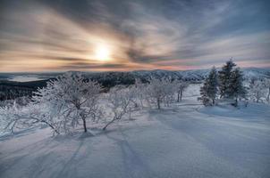 coucher de soleil dans le paysage d'hiver photo
