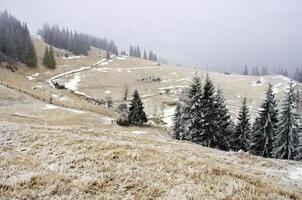 paysage de montagne calme d'hiver