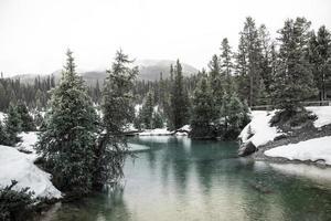 paysage de ruisseau de montagne en hiver