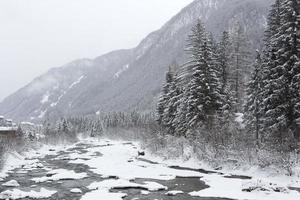 paysage d'hiver avec temps brumeux