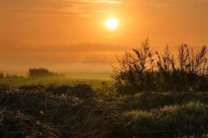 paysage de campagne en début de matinée. photo