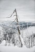 randonnée d'hiver