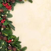 bordure de verdure d'hiver
