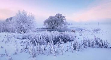 lever de soleil d'hiver féerique photo