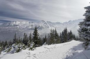 montagnes de tatra en hiver