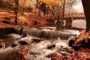 sept lacs photo