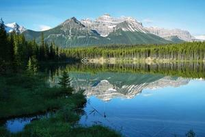 vue sur le lac herbert photo