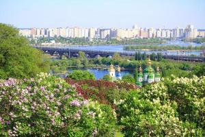kiev et lilas fleurissant au printemps photo