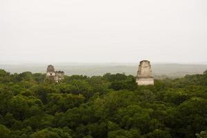 piramides mayas dans la jungle ou selva, tikal