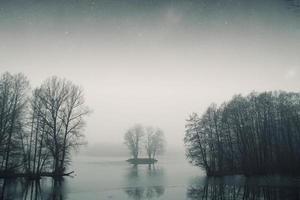 forêt du lac de nuit. photo