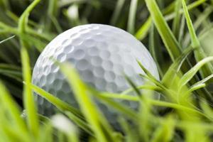balle de golf blanc pur sur l'herbe verte photo