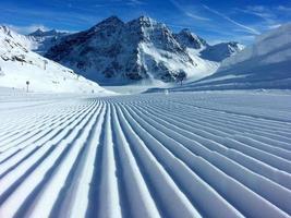 spuren im schnee photo