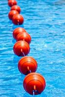 chenille de piscine photo