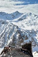 montagne baksan valley, elbrus and cheget, russie. photo