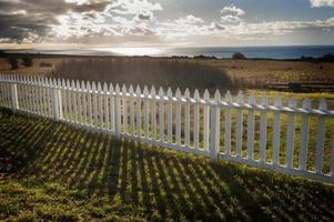 clôture blanche
