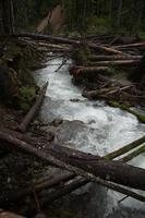ruisseau baekos - 2 photo